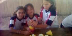 Alumnas de primaria exprimiendo limones en La Albulquería